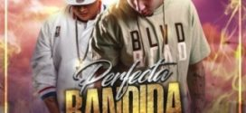 Victor Swift Ft. Carlitos Rossy – Perfecta Bandida